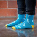 Chronically Curious Socks